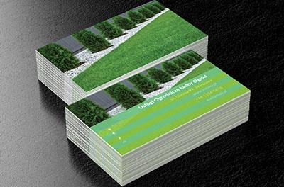 Duże Drzewo Na Białym Tle Wizytówki Usługi Ogrodnicze Netprintpl
