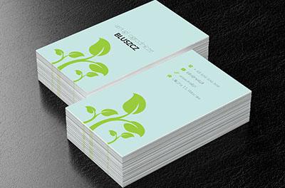 Zielony Ogród Usługi Ogrodnicze Wizytówki Netprintpl